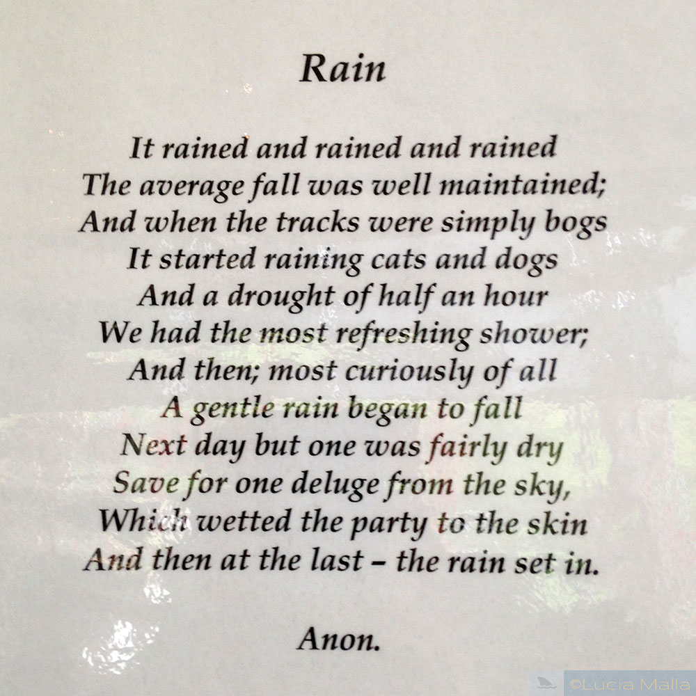 Roteiro Nova Zelândia em 12 dias - Poema da Chuva em Haast