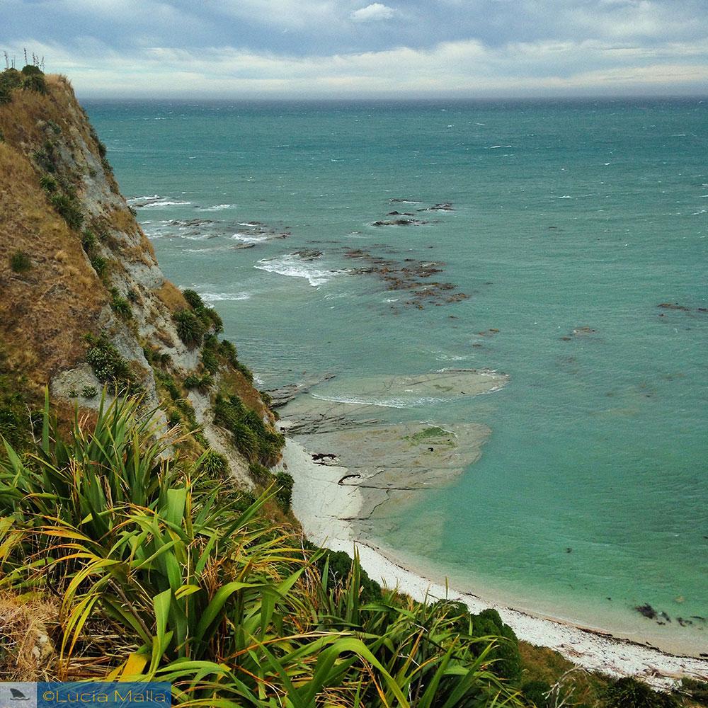 Nova Zelândia em 12 dias - Trilha em Kaikoura