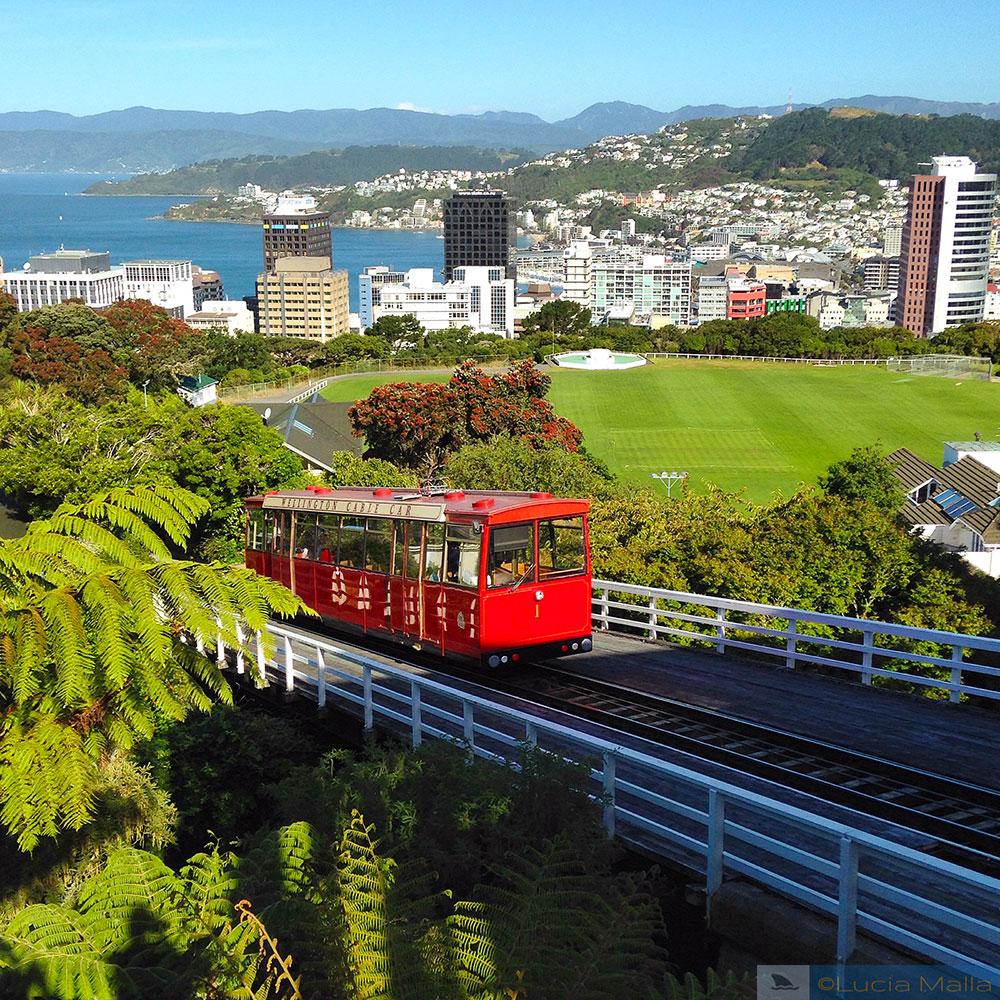Roteiro Nova Zelândia em 12 dias - Wellington - Ilha Norte