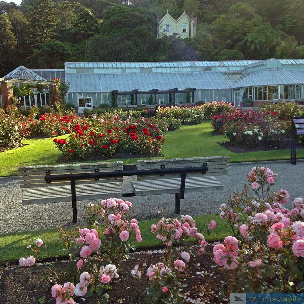 Jardim Botânico de Wellington - Ilha Norte