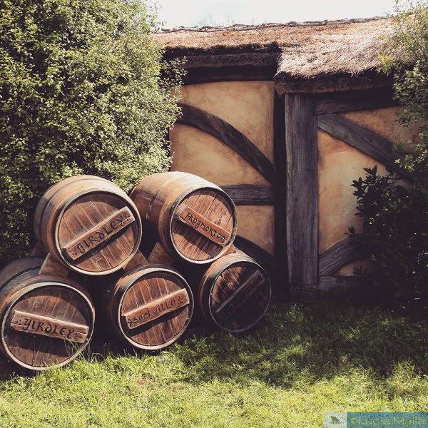 Nova Zelândia em 12 dias - cerveja hobbit sul de Auckland