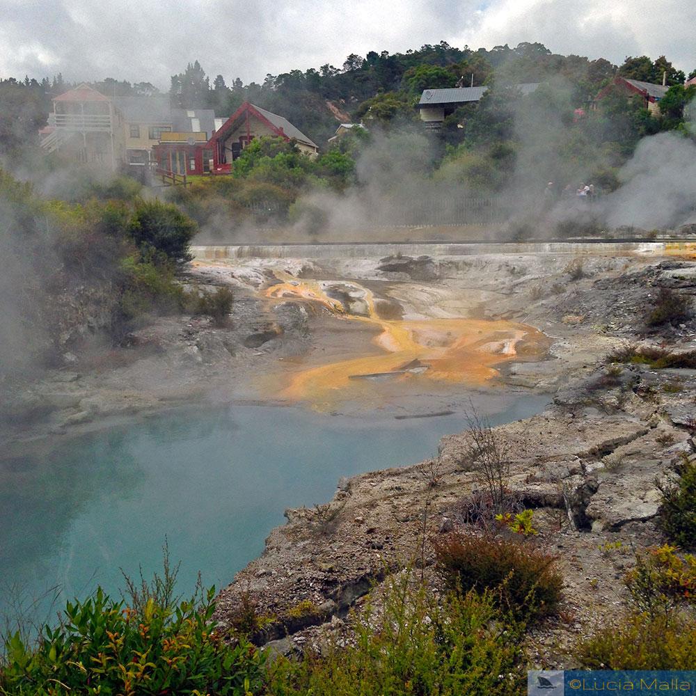 Whakarewarewa Thermal Village - Rotorua - Ilha Norte - Roteiro Nova Zelândia 12 dias