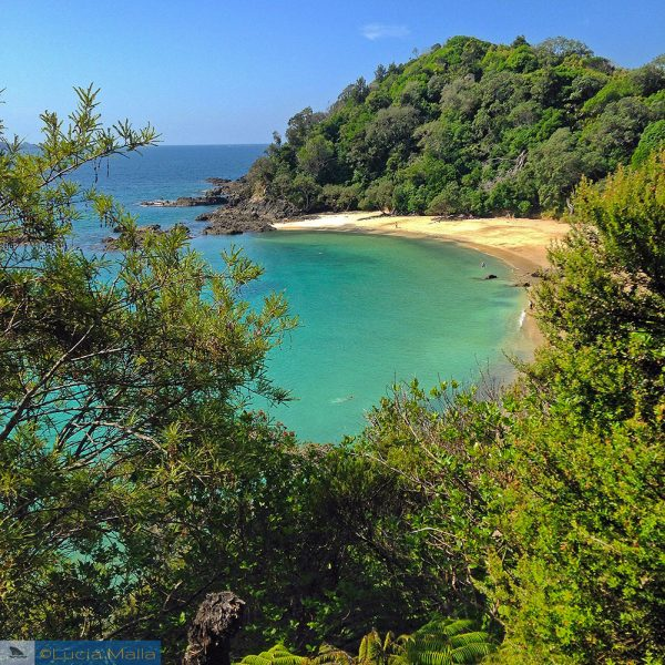 Nova Zelândia em 12 dias - Praia na Ilha Norte