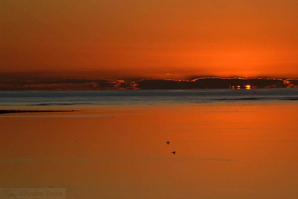Entardecer - Heron Island - Austrália