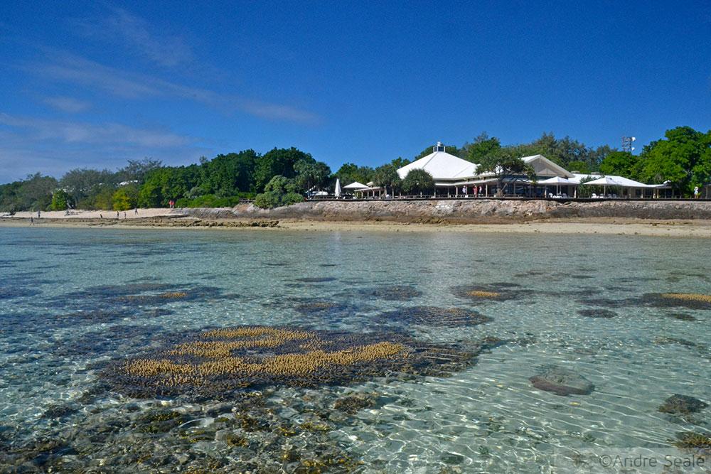 Heron Island - Austrália