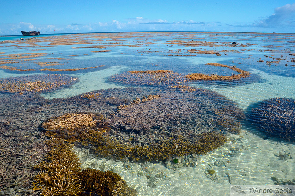 Grande Barreira de Corais Australiana