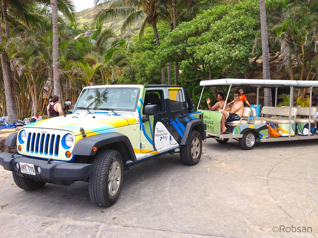 Transporte de subida e descida - Hanauma Bay - Oahu