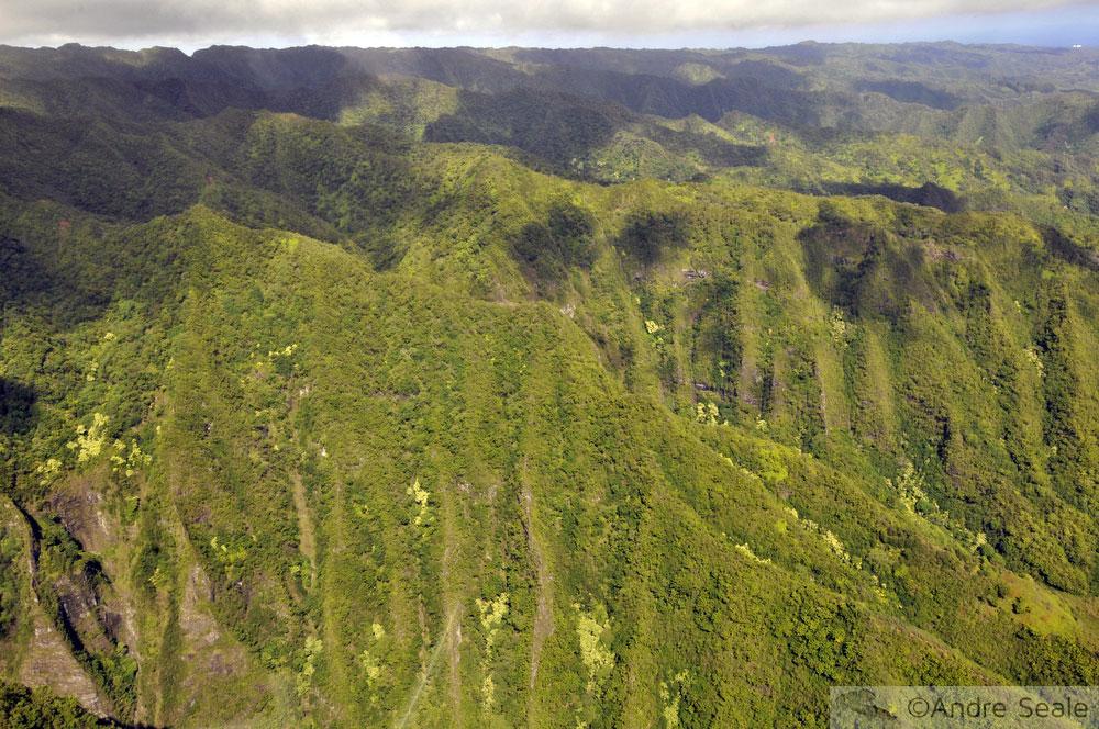 Penhascos de Oahu