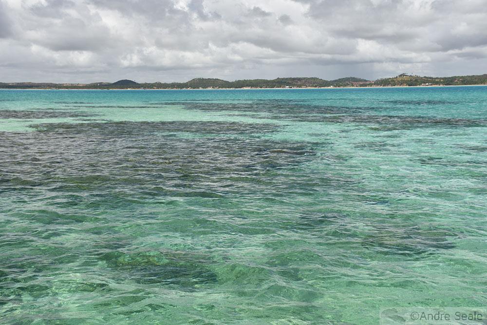 Galés com os corais de Maragogi