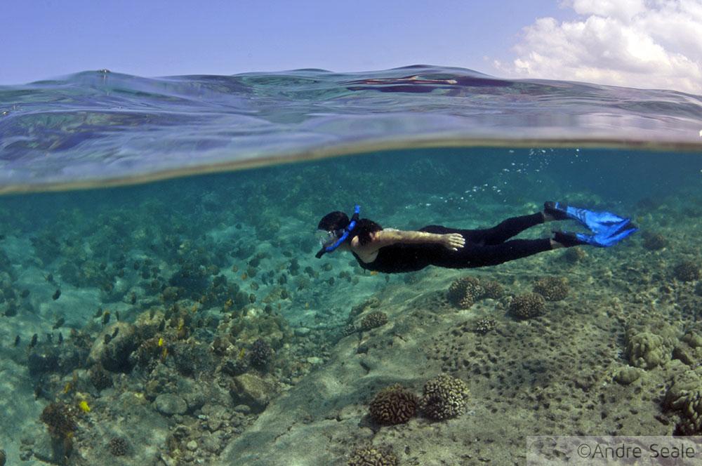 Snorkel em Honaunau Bay - Big Island - Havaí