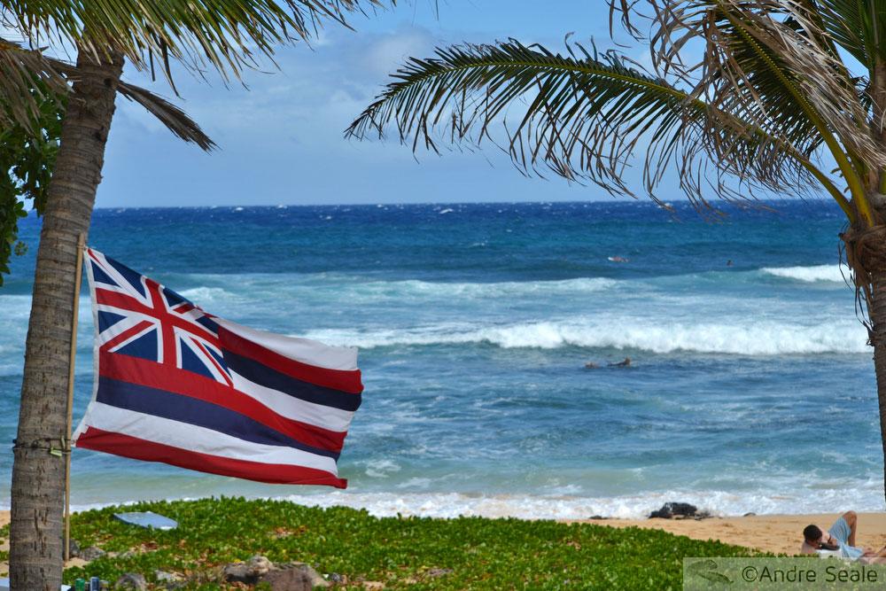 O que é o Havaí - bandeira