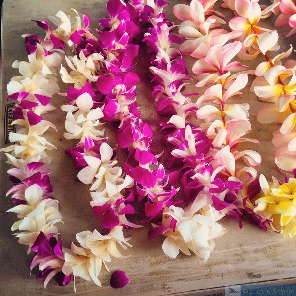 Lei Day - Dia do Lei - Havaí