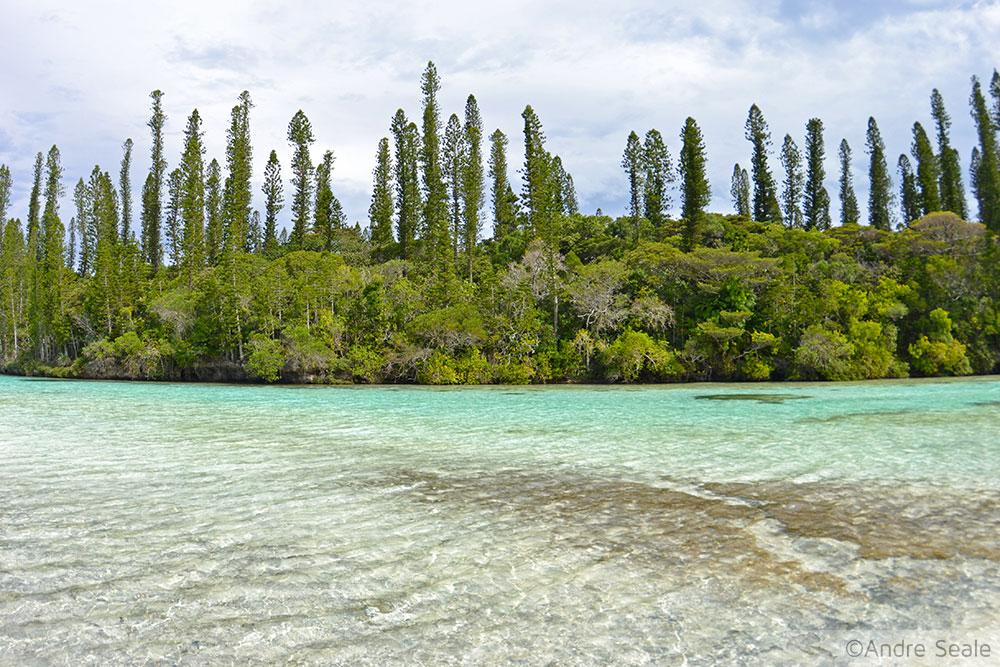 Aquário Natural da Isle of Pines - ilha mais bonita do mundo - Nova Caledônia