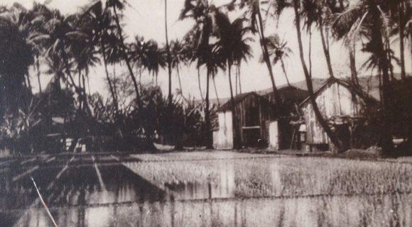 Viagem pelo Havaí de 1924
