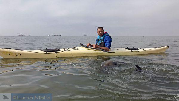 Guias de viagem - Walvis Bay