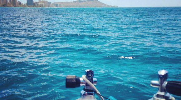Sexta Sub: A melhor época de mergulho no Havaí