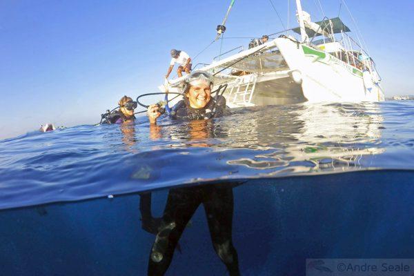 Mergulho no Havaí