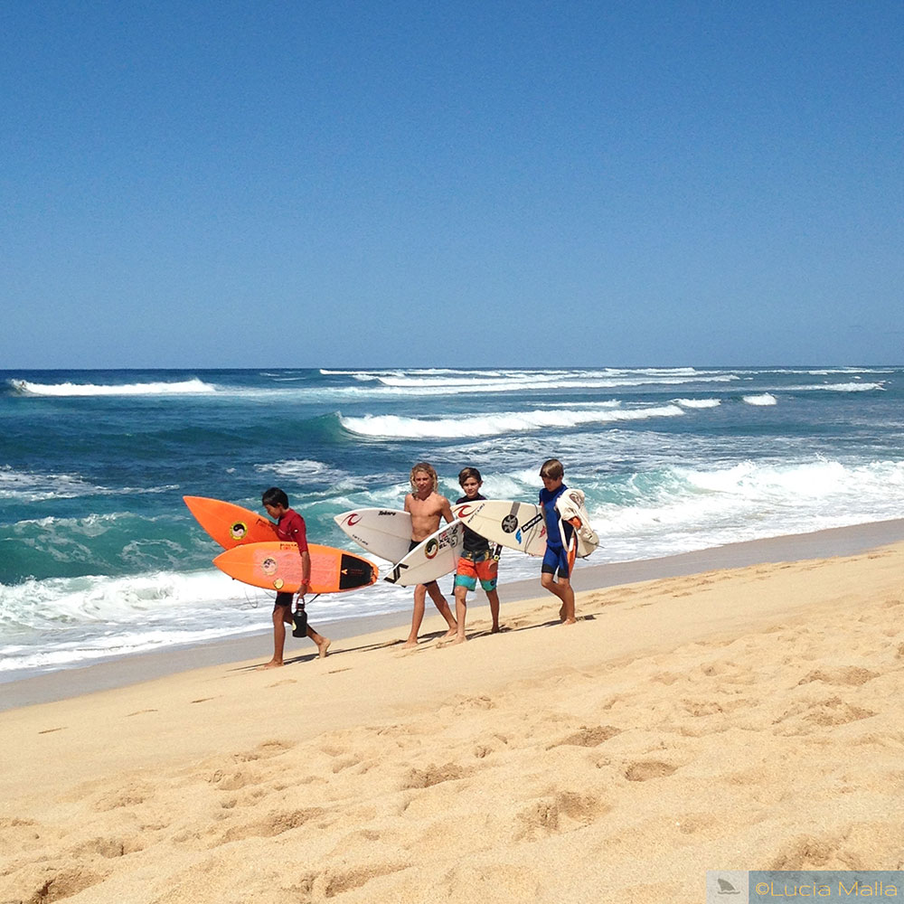 Surfistas - Velzyland - North Shore de Oahu