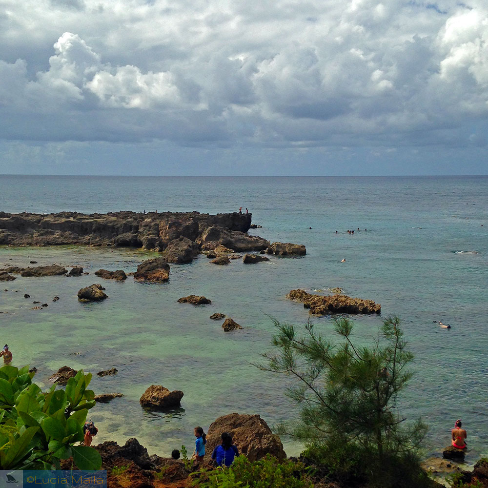 Shark's Cove - Havaí