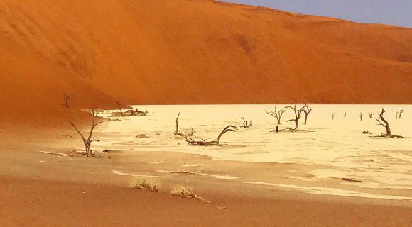 Namíbia: Quando a poeira baixa