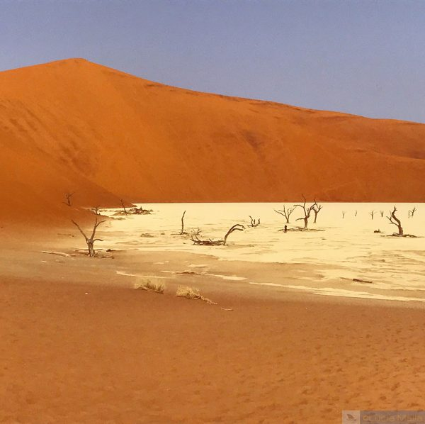 Namíbia - quando a poeira baixa