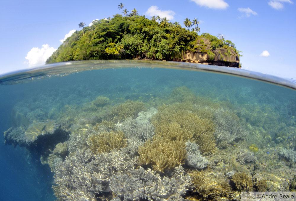 Nukuatea - snorkel em Wallis & Futuna