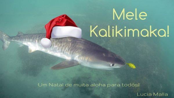 Mensagem Malla de Natal
