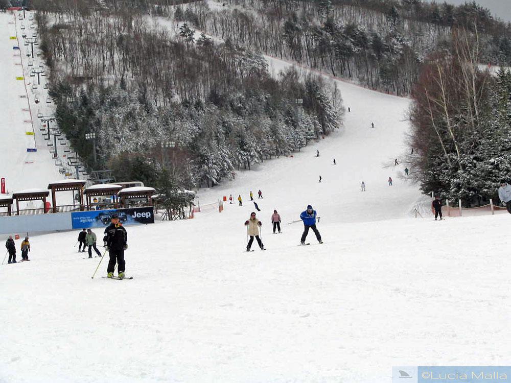 Esquiando no Yongpyong Alpine Center