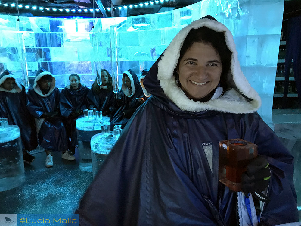 Ice Bar de Estocolmo