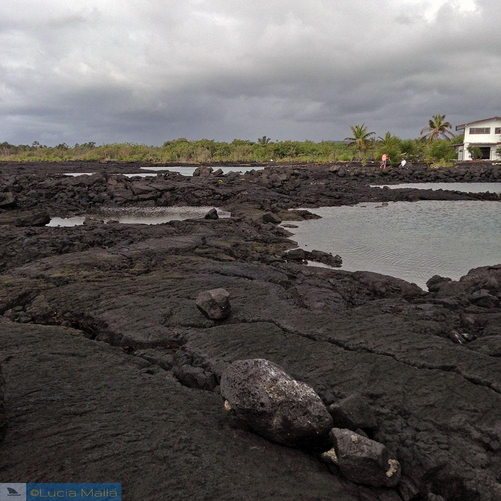 Waiopae tide pools - Big Island do Havaí