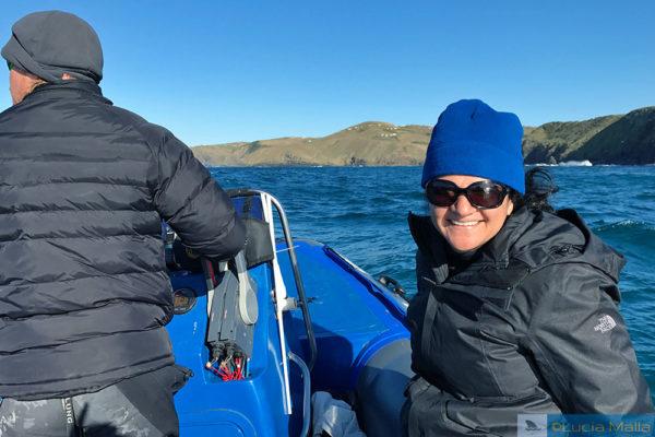 Mergulho no Sardine Run
