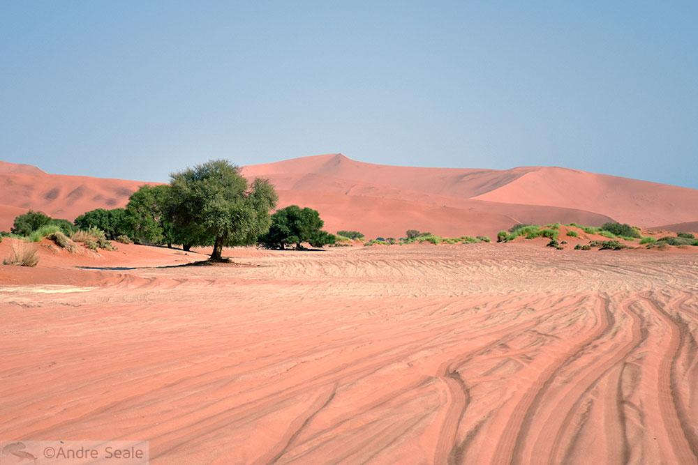 Estrada para o Sossusvlei - Cinco dias na Namíbia