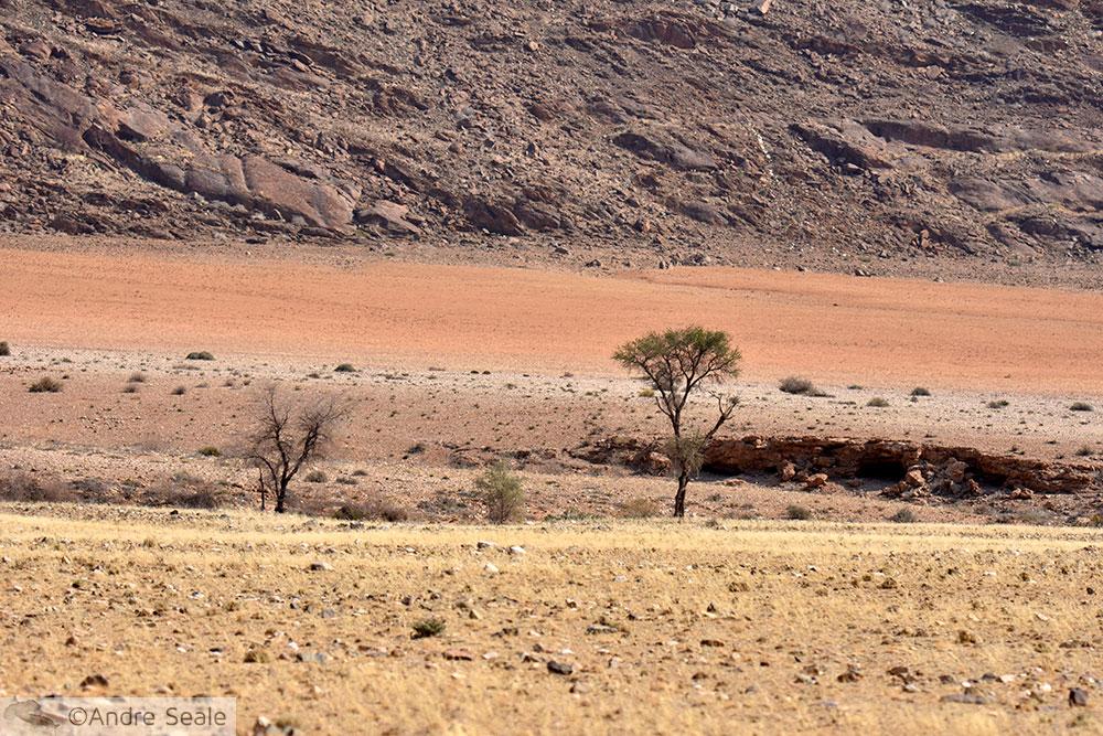 Beira da estrada para Solitaire - Cinco dias na Namíbia