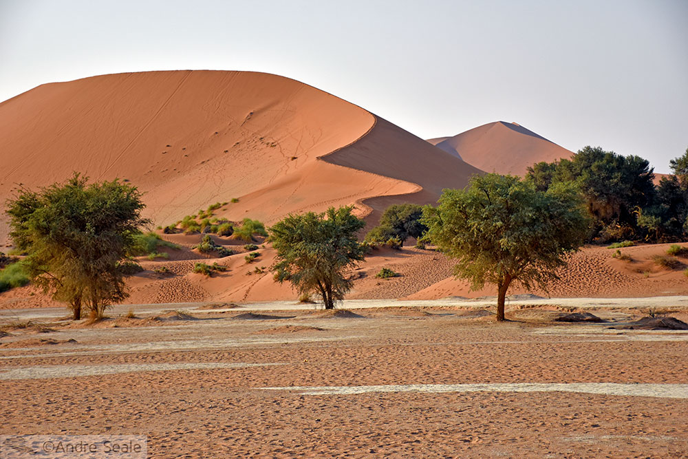 Sossusvlei - Cinco dias na Namíbia