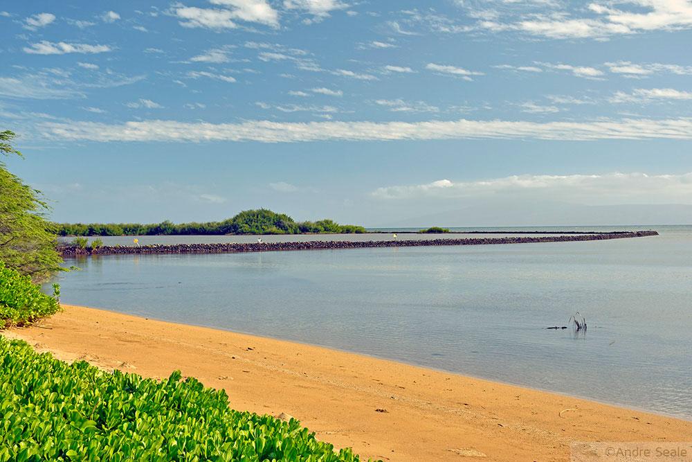Fishpond - Molokai