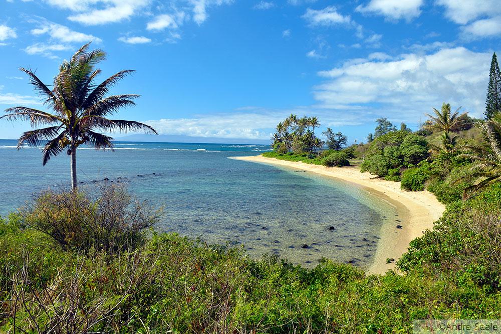 3 dias em Molokai - praia deserta