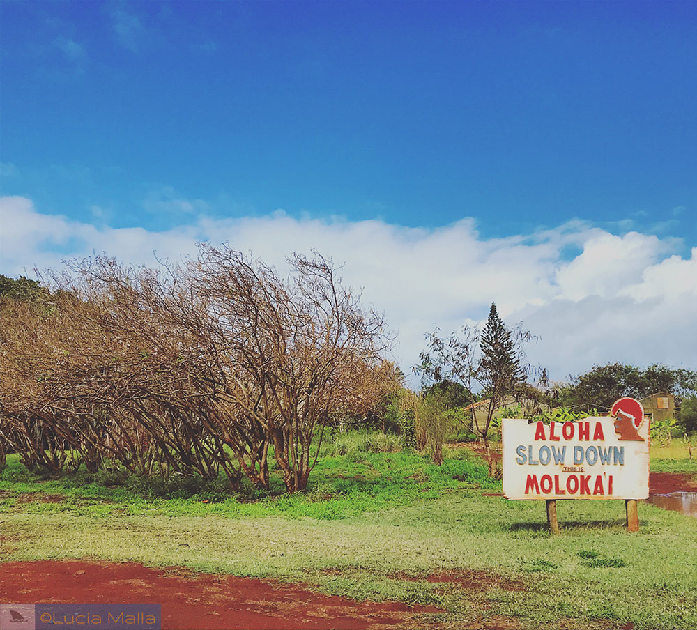 Slow down em Molokai - Havaí