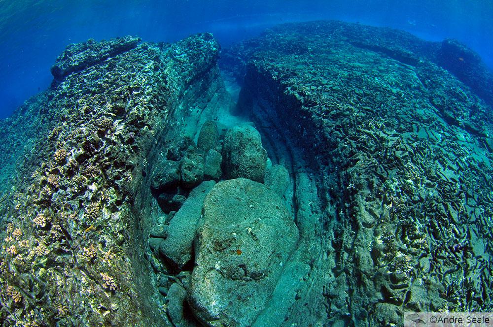 Sexta Sub - snorkel e mergulho em Niihau e Lehua