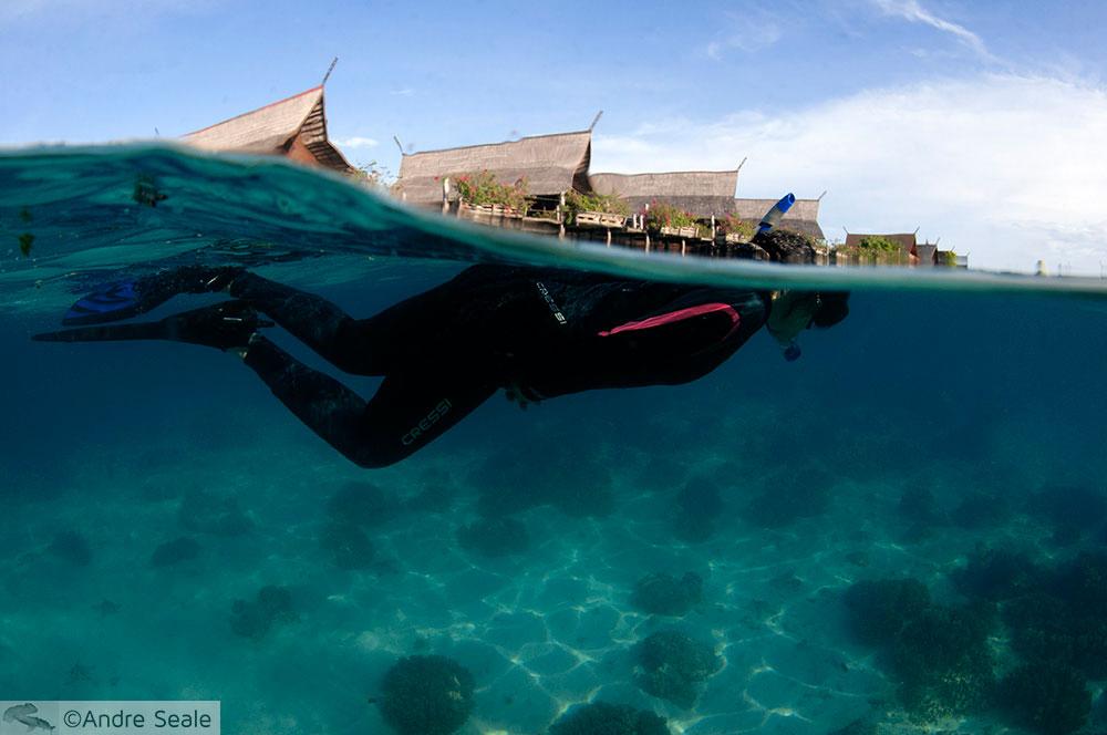 Snorkel no Kapalai Dive Resort - Malásia