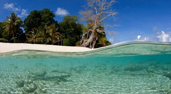 Mergulho em Sipadan: o paraíso da Malásia