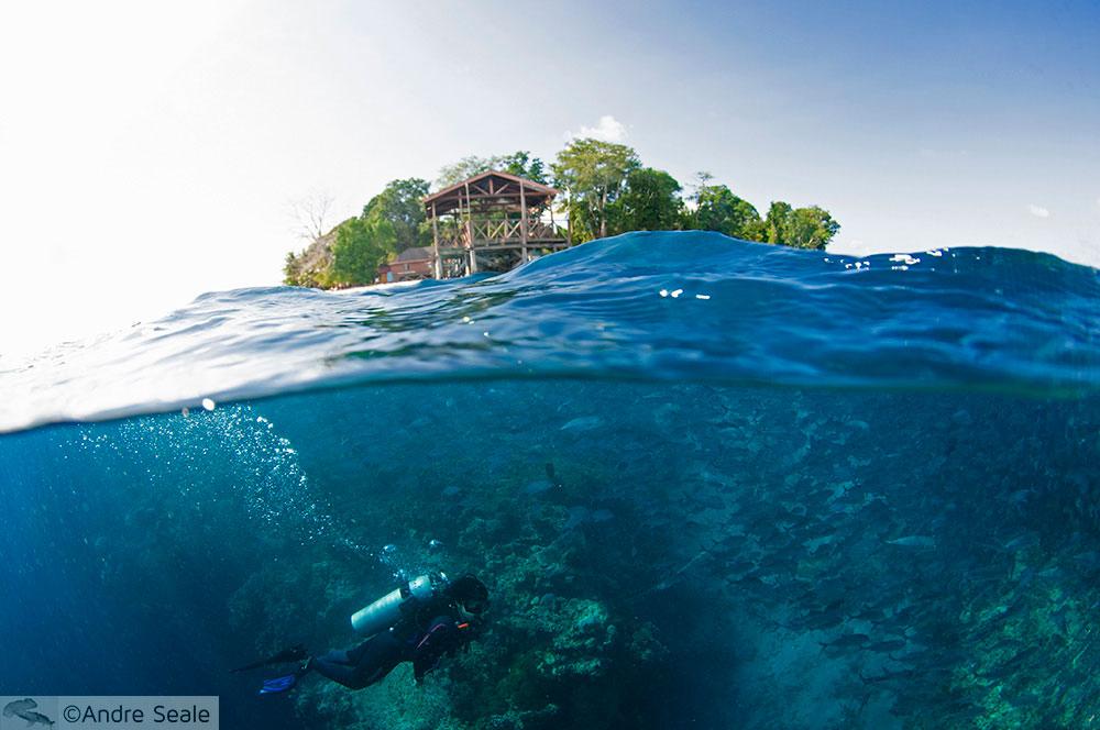 Mergulho em Sipadan - Malásia