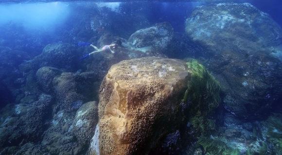 Grandes Points de Mergulho – Arquipélago de São Pedro & São Paulo