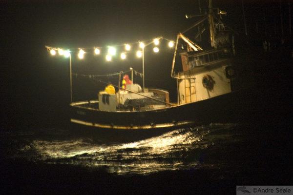 Pesca Atlântico Norte brasileiro - noturno