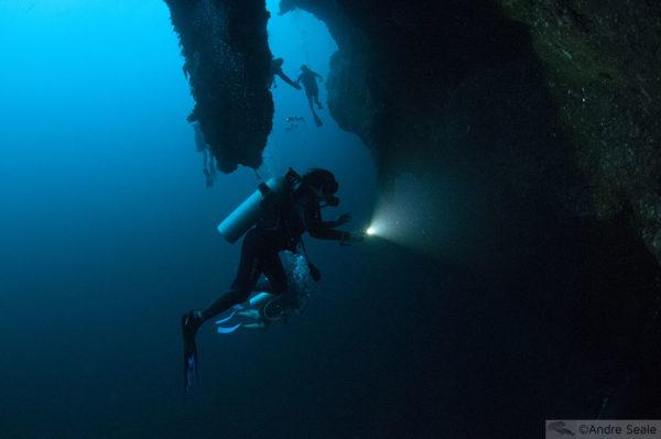 Visitar Great Blue Hole - mergulho