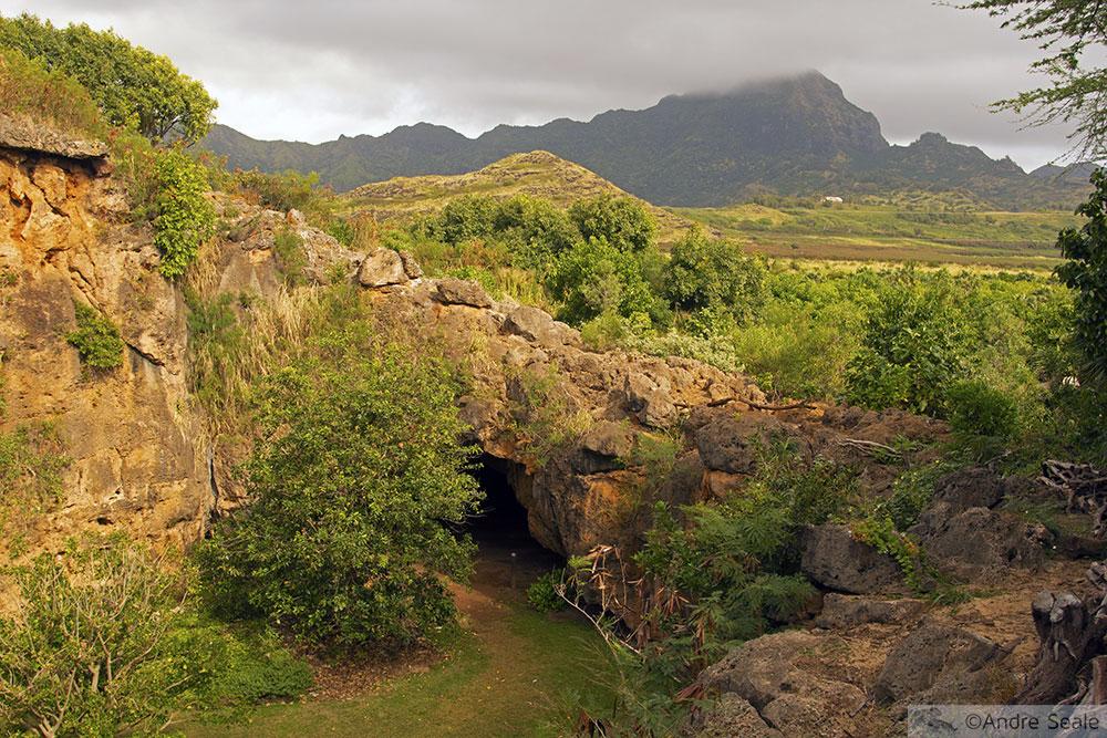Caverna de Makauwahi - Kauai
