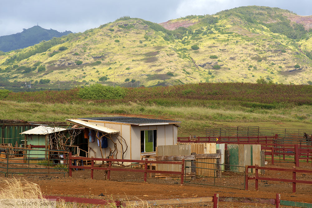 Estábulo - Kauai