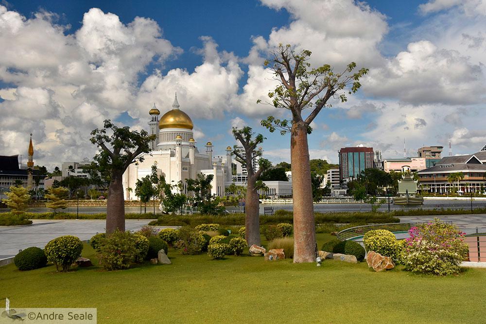 Em Brunei - Mesquita Ali Saifuddien