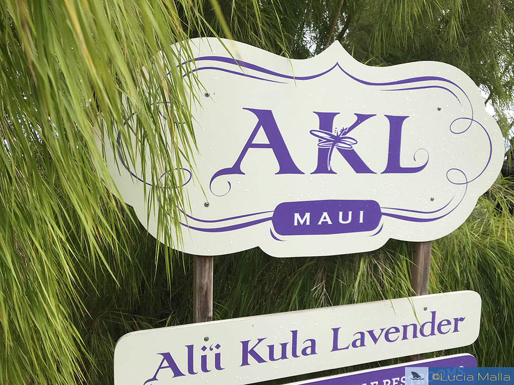 AKL - Alii Kula Lavender Farm