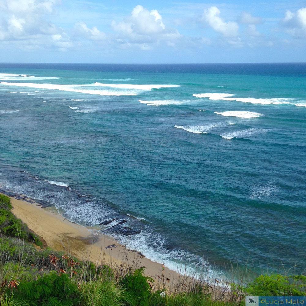 Diamond Head cliffs