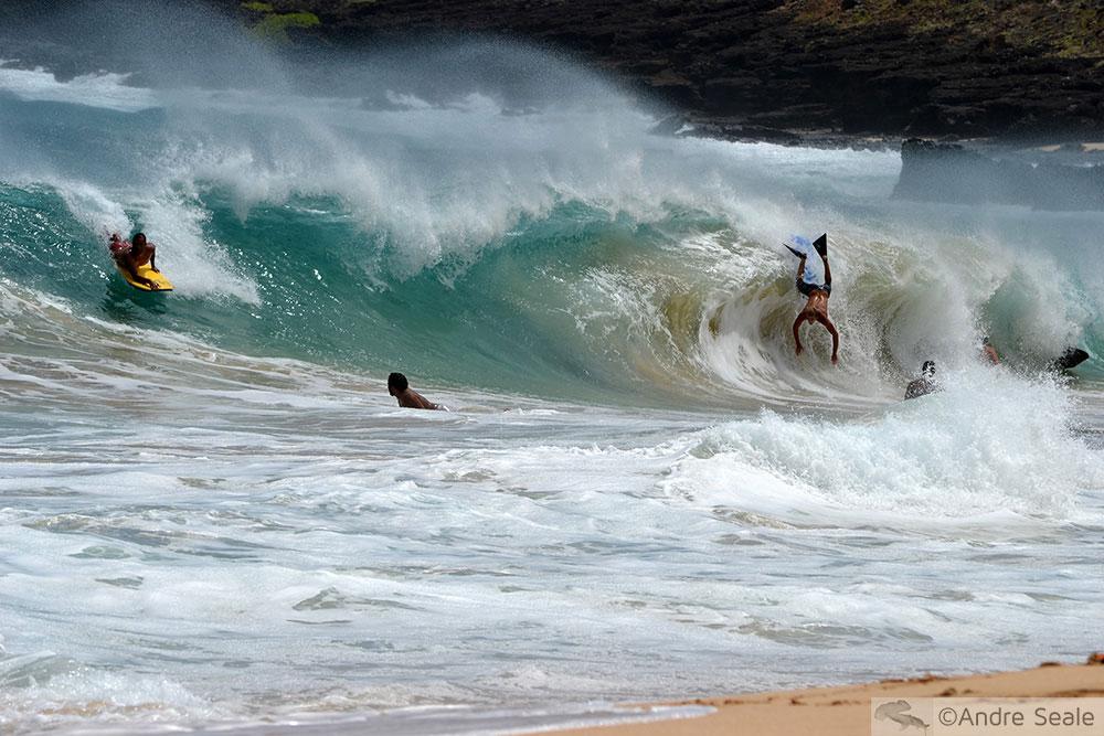 Surfe no Havaí - Sandy's